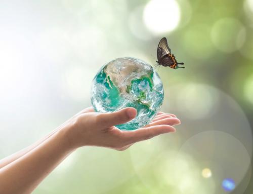 Israelische technologische Fortschritte zur Bekämpfung des globalen Klimawandels