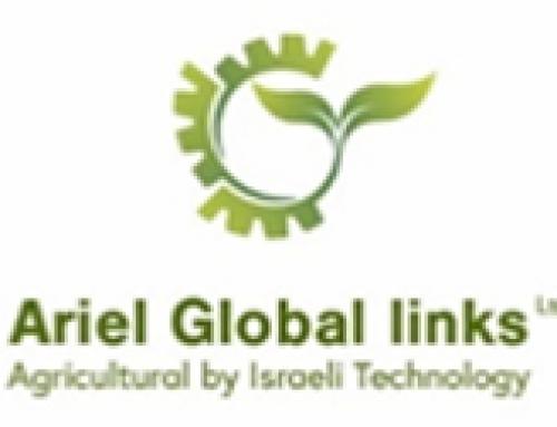 Ariel Global