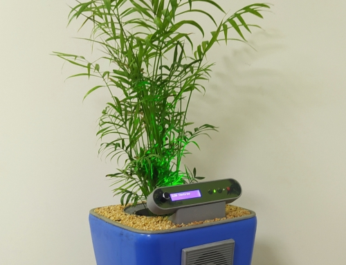 Plant based Air Purifier