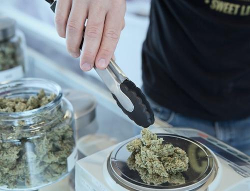 México Legaliza el Uso de Cannabis Medicinal