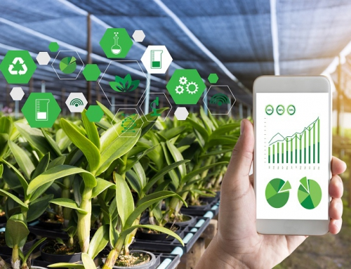 Israeli Startups Pioneering IoT for Agriculture