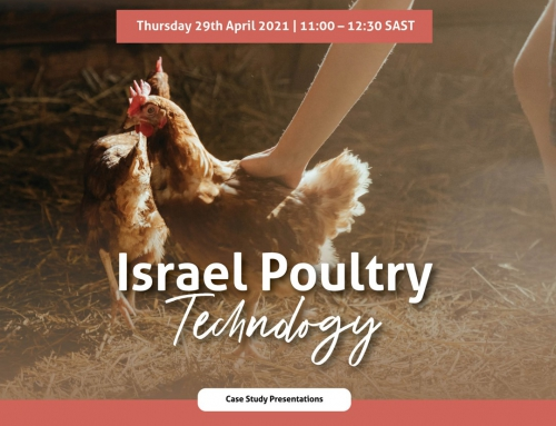 Israel Poultry Tech Webinar  – Here's what you missed