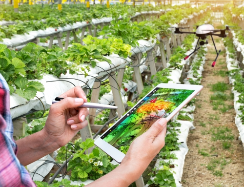 How Israeli AgTech Is Transforming Agriculture Across the Globe