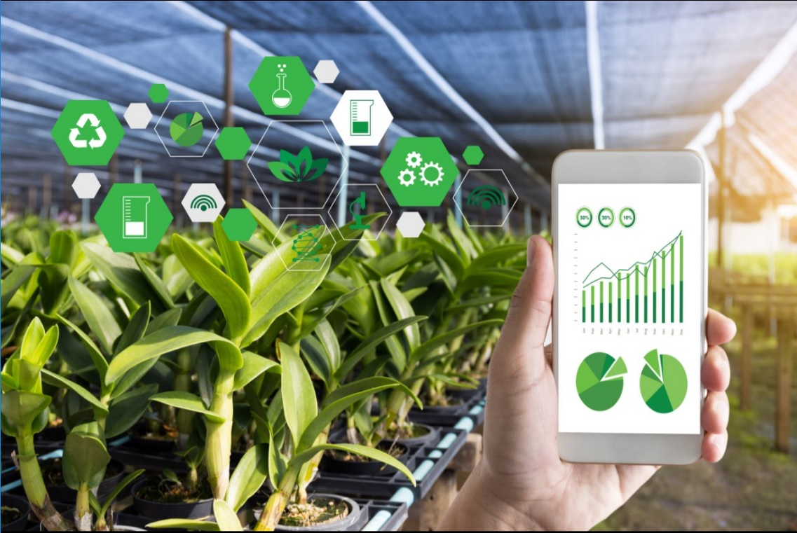Israeli Startups Pioneering IoT for Agriculture - USA